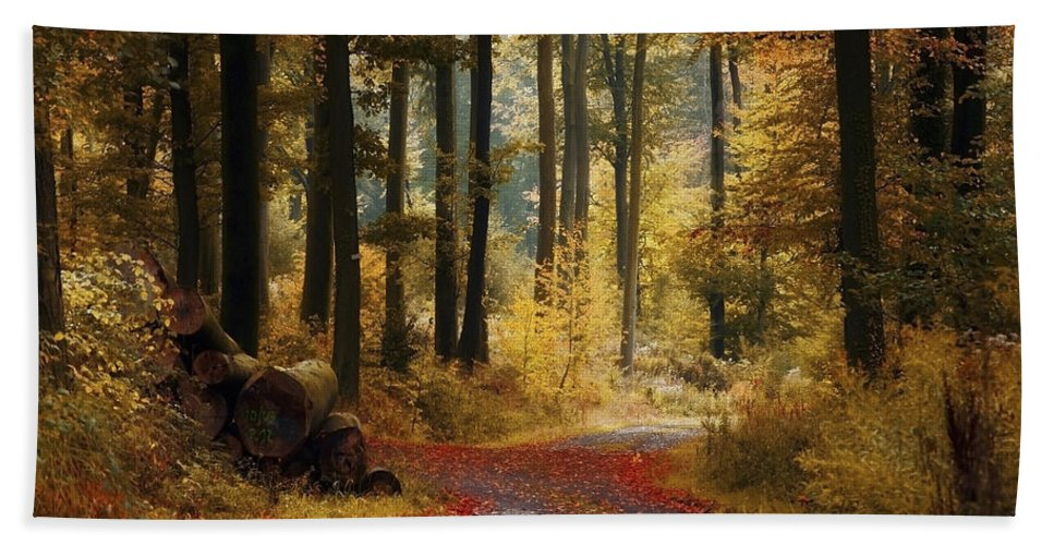 Forest Road Hand Towel featuring the photograph Forest Road by Ingrid Smith-Johnsen
