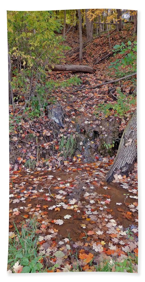 Trickle Bath Sheet featuring the photograph Forest Trickle by Susan Wyman