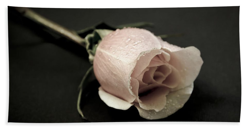 Rose Hand Towel featuring the photograph Forever A Rose by Athena Mckinzie