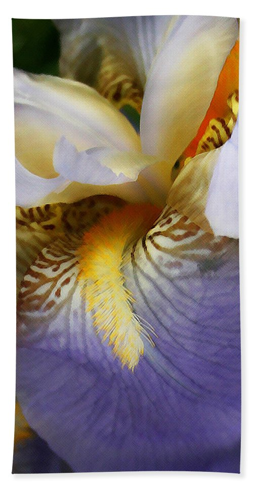 Iris Bath Sheet featuring the photograph Forever Iris by Susan McMenamin