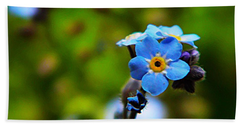 Nature Bath Sheet featuring the photograph Forget Me Not Bloom by Chris Berry