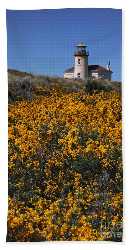 Coquile River Lighthouse Bath Sheet featuring the photograph Framed With Gold by Mike Dawson
