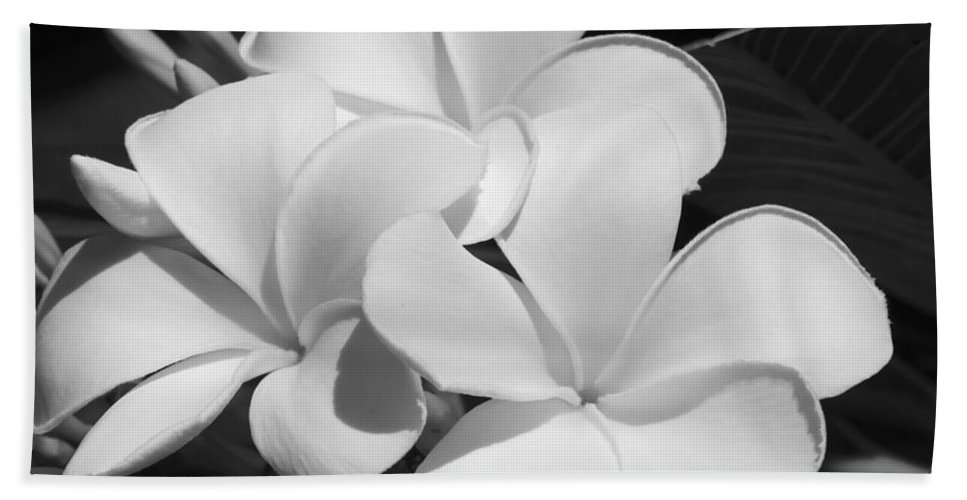 Art Hand Towel featuring the photograph Frangipani In Black And White by Sabrina L Ryan