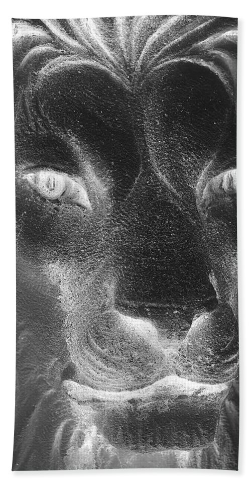 Lion Hand Towel featuring the photograph Frankie Lion Negative by Rob Hans