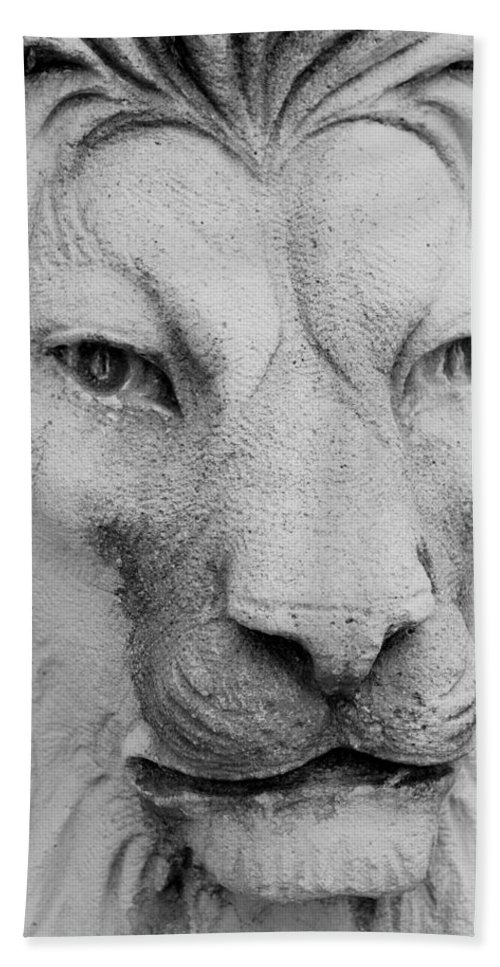 Lion Hand Towel featuring the photograph Frankie Lion by Rob Hans