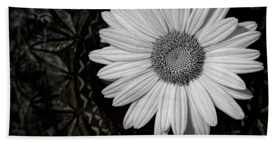 Daisy Hand Towel featuring the photograph Fresh Cut by Kristi Swift