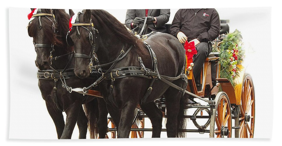 jenny Gandert Hand Towel featuring the photograph Friesian Carriage by Jenny Gandert