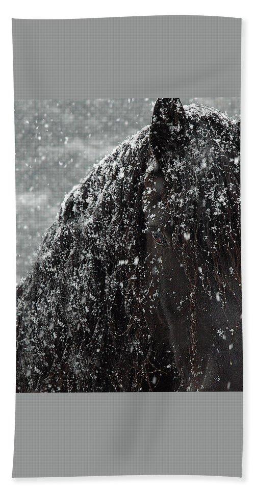 Horses Bath Towel featuring the photograph Friesian Snow by Fran J Scott