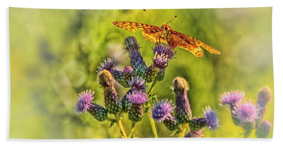 Butterfly Hand Towel featuring the photograph Fritillary On Thistle by Susan Capuano