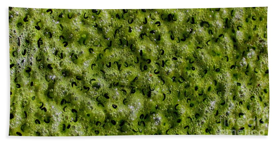 Frog Spawn Macro Bath Sheet featuring the photograph Frog Spawn by Joshua Bales