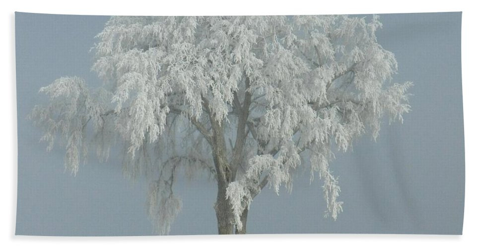 Landscape Bath Sheet featuring the photograph Frost Covered Lone Tree by Penny Meyers