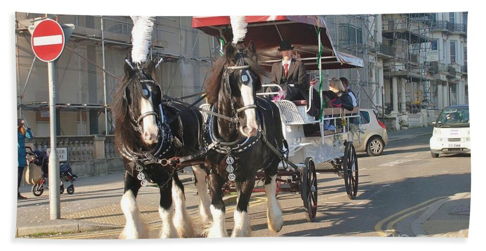 Horse Bath Sheet featuring the photograph Frost Fair Horses Hastings by David Fowler