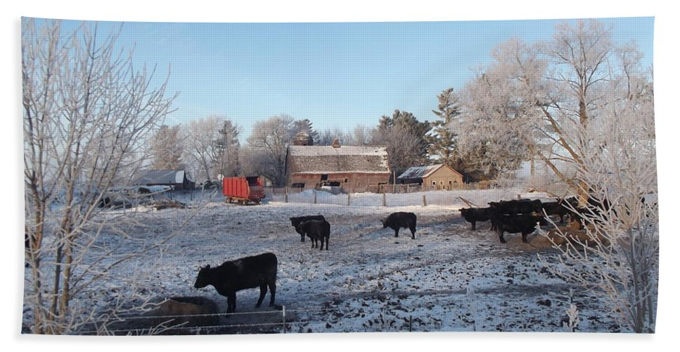 Frost Hand Towel featuring the photograph Frosty Barnyard by Bonfire Photography