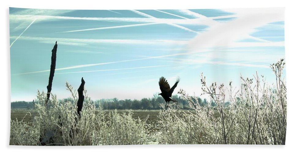 Bird Hand Towel featuring the photograph Frosty Flight by Bonfire Photography
