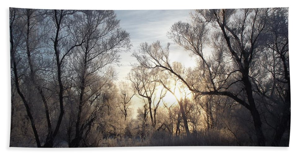 Frost Hand Towel featuring the photograph Frosty Morn 3 by Bonfire Photography