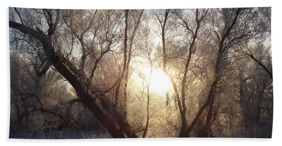 Frost Hand Towel featuring the photograph Frosty Morn by Bonfire Photography