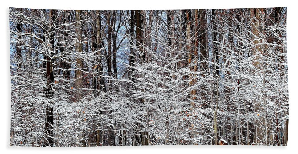 Snow Hand Towel featuring the photograph Frosty by Frozen in Time Fine Art Photography