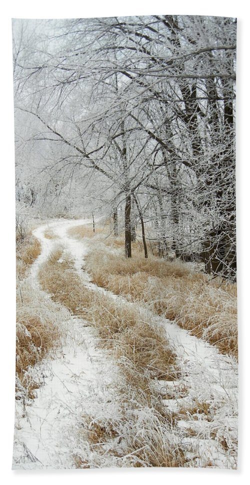 Landscape Bath Sheet featuring the photograph Frosty Trail by Penny Meyers