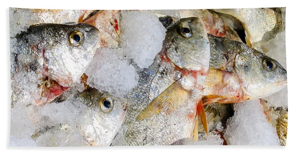 Cindy Archbell Bath Sheet featuring the photograph Frozen Fish On Ice by Cindy Archbell