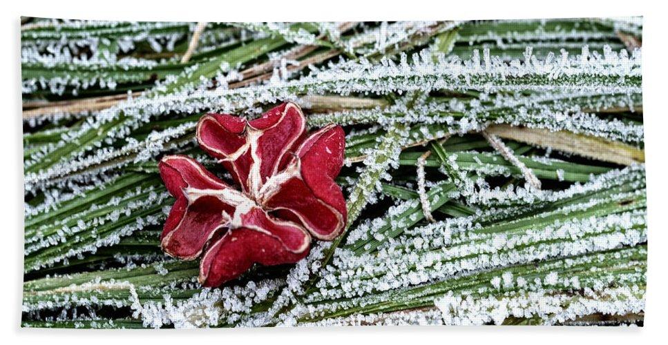 Flower Bath Sheet featuring the photograph Frozen Flower by Mats Silvan