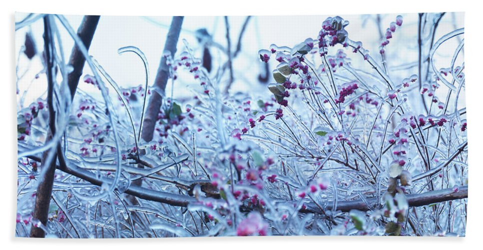 Nature Hand Towel featuring the photograph Frozen In Ice Nature by Oleksiy Maksymenko