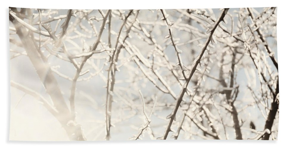 Tree Hand Towel featuring the photograph Frozen Tree Branches In Winter by Oleksiy Maksymenko