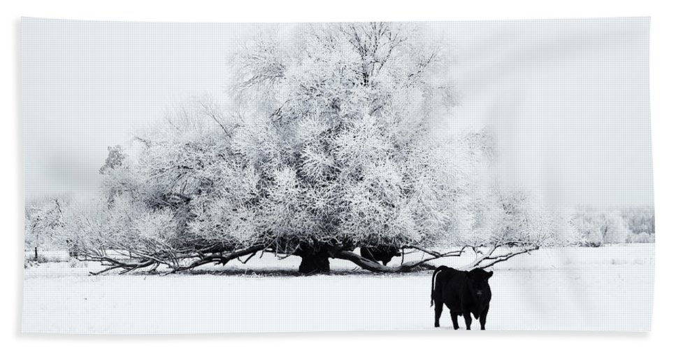 Winter Hand Towel featuring the photograph Frozen World by Mike Dawson