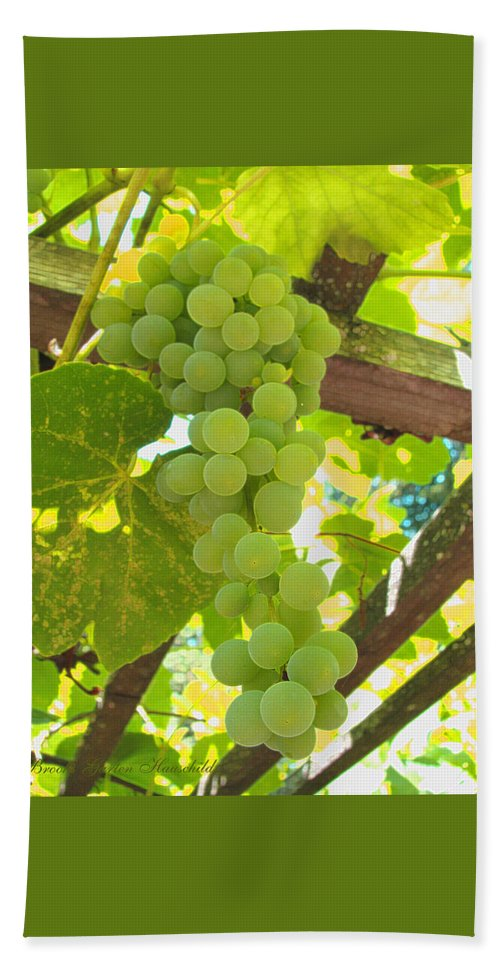 Grapes Hand Towel featuring the photograph Fruit Of The Vine - Garden Art For The Kitchen by Brooks Garten Hauschild