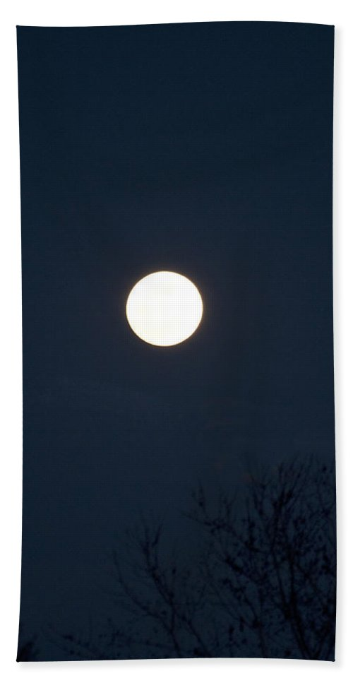 Color Hand Towel featuring the photograph Full Moon With Tree Branches Night Usa by Sally Rockefeller