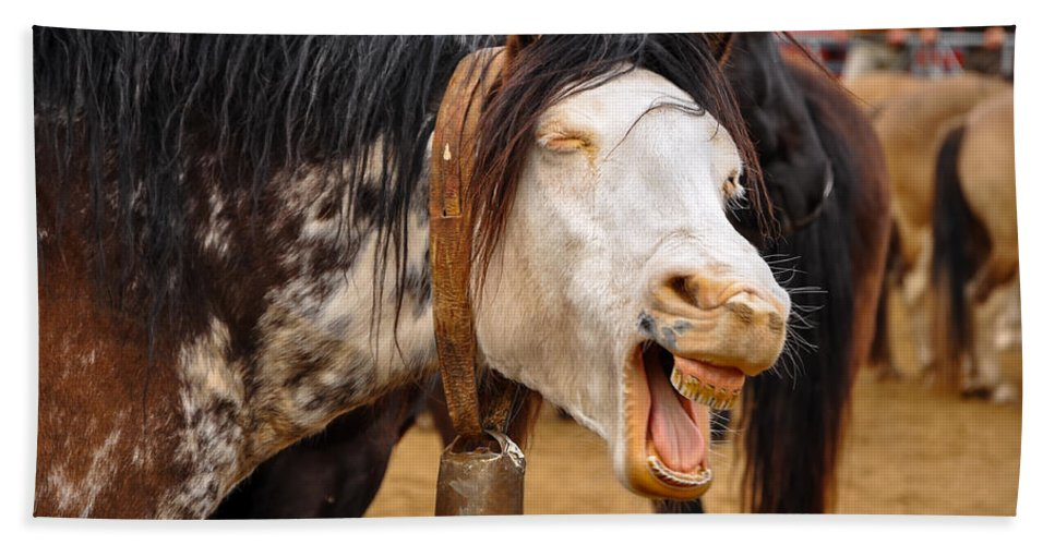 Horse Bath Sheet featuring the photograph Funny Looking Horse by Jess Kraft