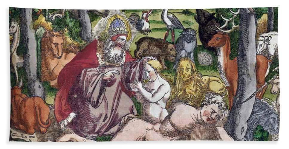 Science Bath Sheet featuring the photograph Garden Of Eden Historiae Animalium by Science Source