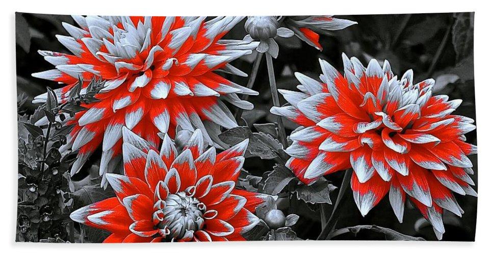 Monochrome Bath Sheet featuring the photograph Garden Pom Poms by Tim G Ross