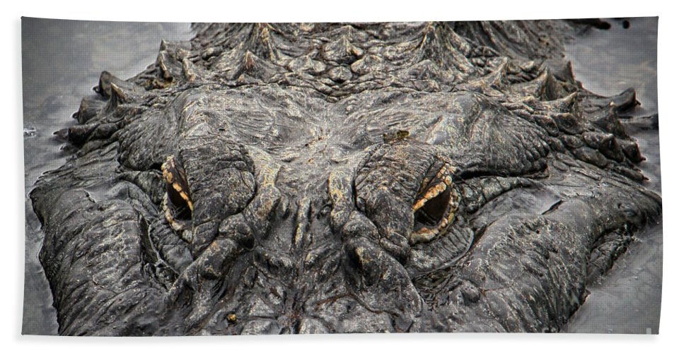 American Alligator Hand Towel featuring the photograph Gator Eyes by Barbara Bowen