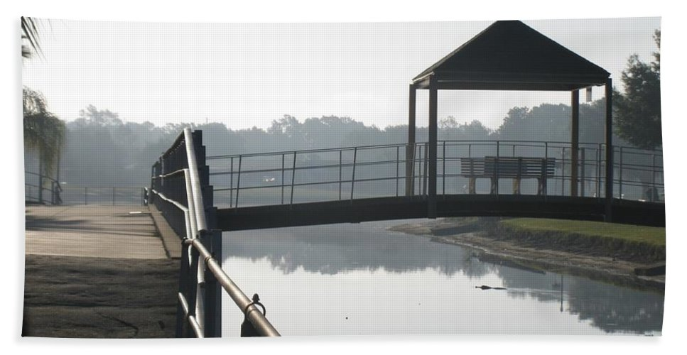 Landscape Hand Towel featuring the photograph Gator On A Foggy Morning by Zina Stromberg