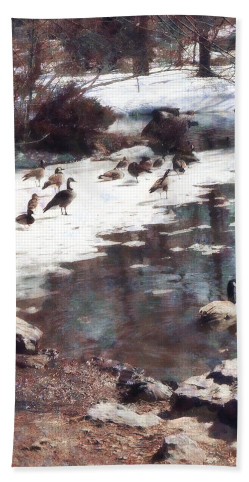 Goose Hand Towel featuring the photograph Geese On An Icy Pond by Susan Savad