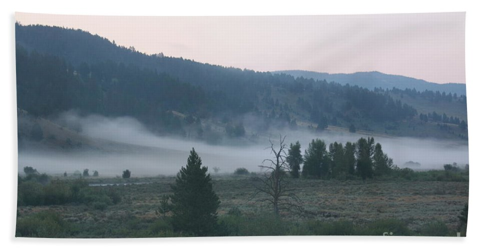 Morning Bath Sheet featuring the photograph Gentle Morning by Robin Maria Pedrero