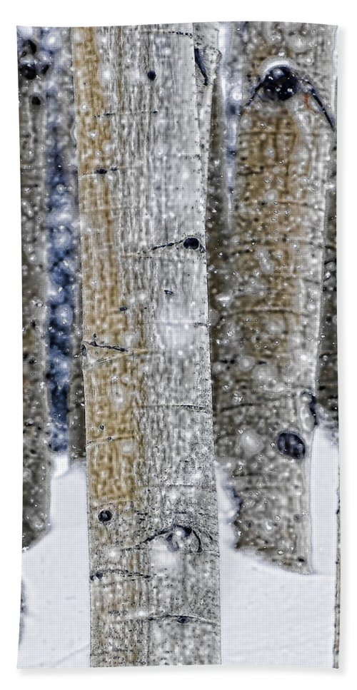 Aspen Bath Sheet featuring the photograph Gently Falling Forest Snow by Don Schwartz