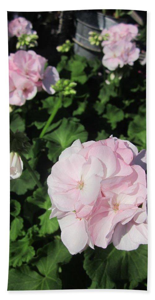 Geranium Bath Sheet featuring the photograph Geranium In Pink by Rosita Larsson