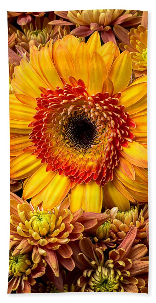 Mum Hand Towel featuring the photograph Gerbera Daisy With Mums by Garry Gay