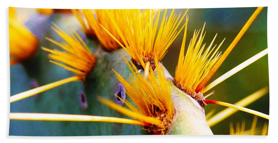 Cactus Bath Sheet featuring the photograph Get The Point by Craig David Morrison