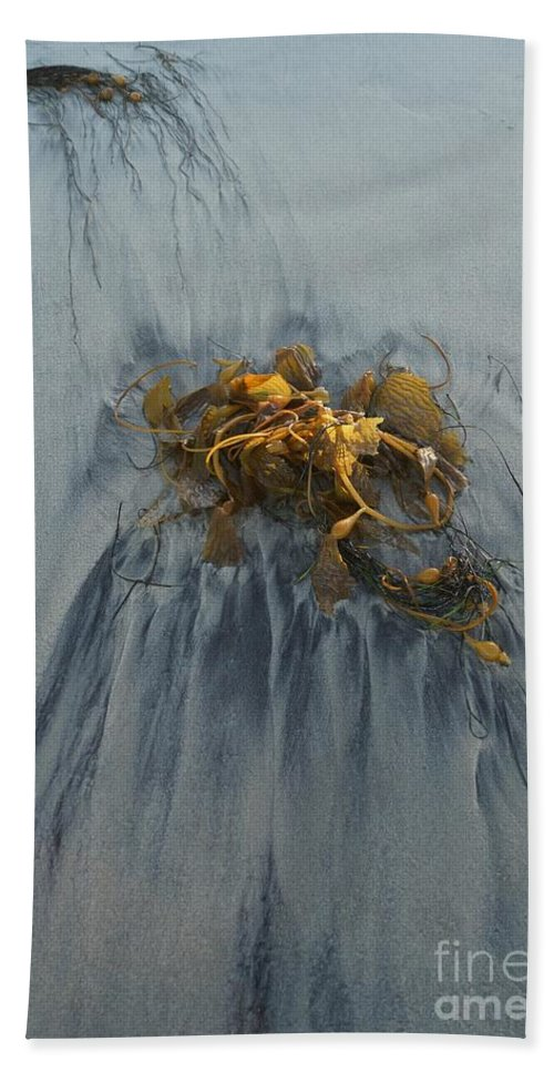 Kelp Hand Towel featuring the photograph Giant Kelp On The Beach by Kerri Mortenson