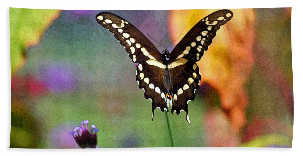 Bath Sheet featuring the photograph Giant Swallowtail Butterfly Photo-painting by Karen Adams