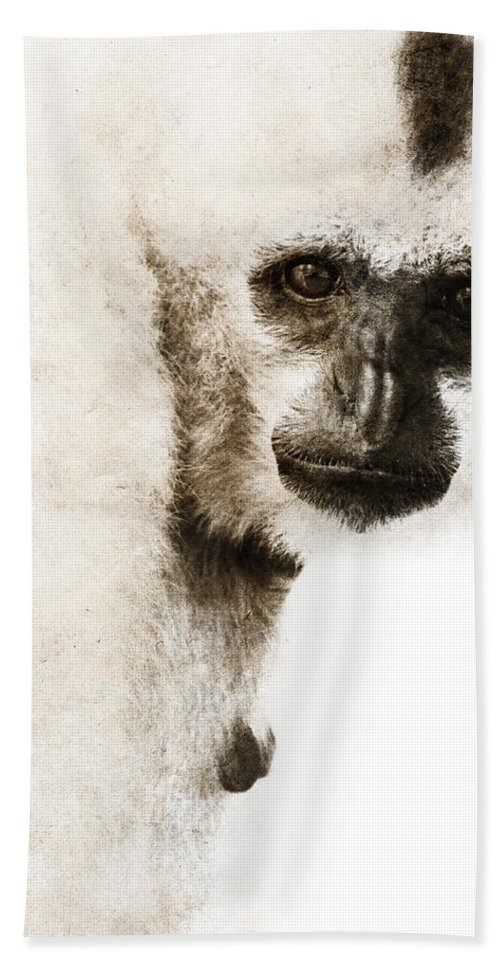Wild Animals Bath Sheet featuring the digital art Crested Gibbon #1 by Nola Lee Kelsey