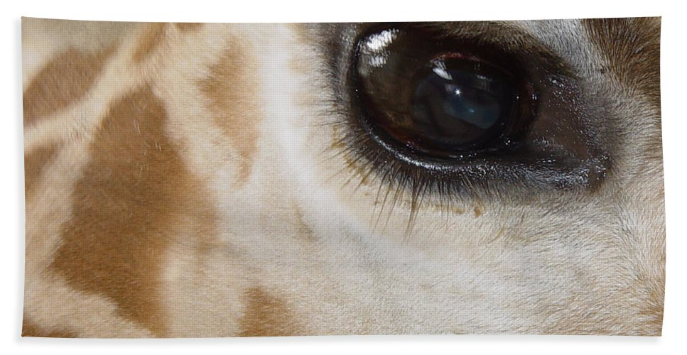 Giraffe Bath Sheet featuring the photograph Giraffe Eye by Heather Coen