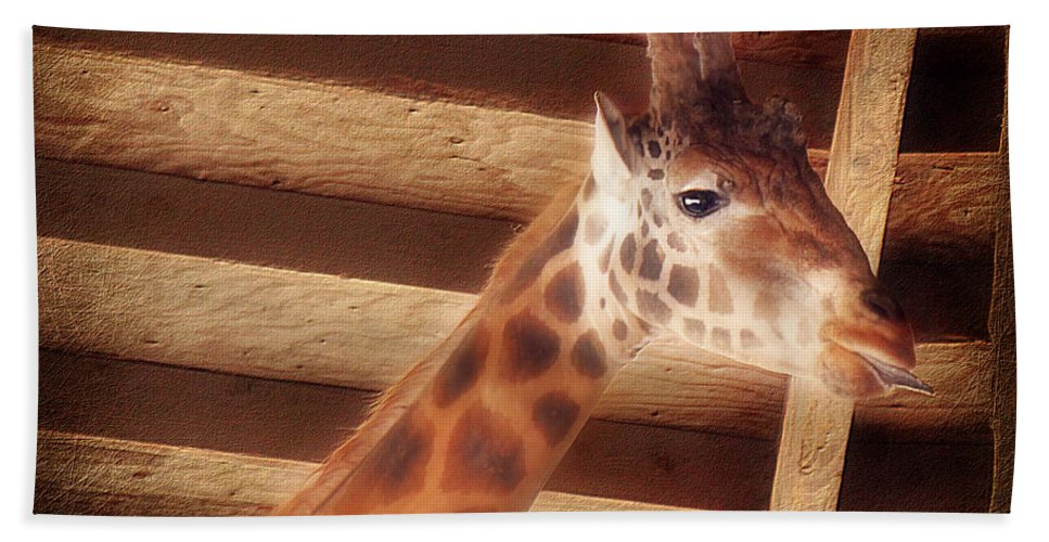 Giraffe Bath Sheet featuring the photograph Giraffe Smarty by Melanie Lankford Photography