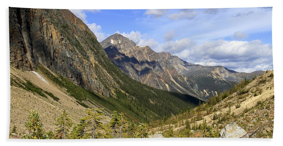Mountains Bath Sheet featuring the photograph Glacier Trail Path  by Teresa Zieba