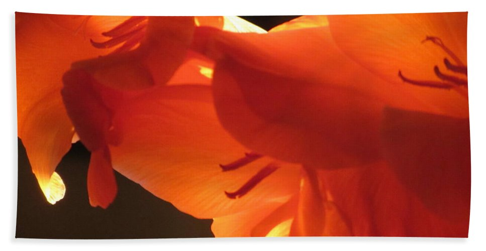 Flower Bath Sheet featuring the photograph Gladiola Close Up 3 by Anita Burgermeister
