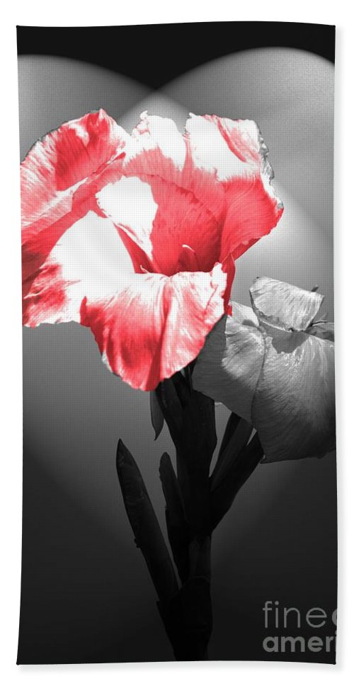 Flowers Bath Sheet featuring the photograph Gladiola With Heart by Cindy Manero