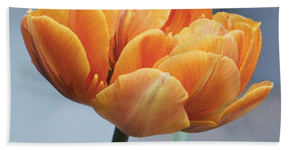 Multi-petal Bath Sheet featuring the photograph Glorious by Lilliana Mendez