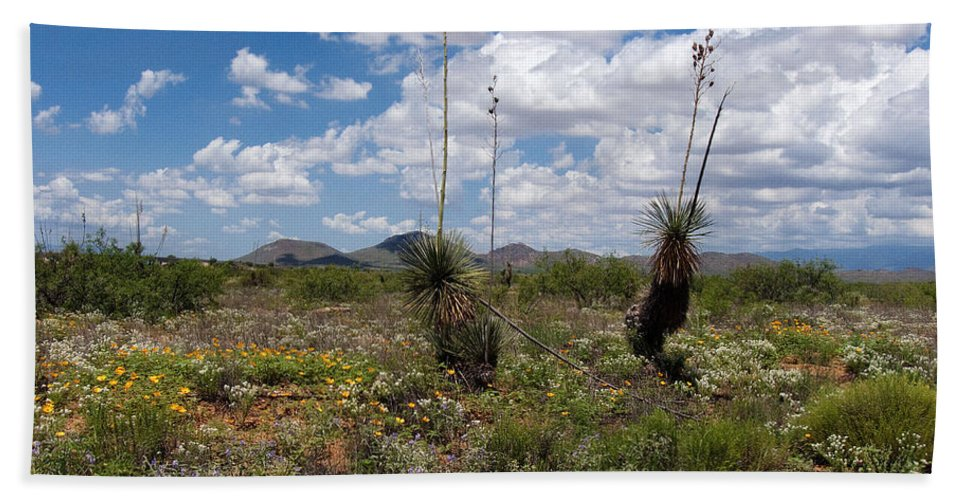Arizona Hand Towel featuring the photograph Glorious Spring In The Desert by Lucinda Walter